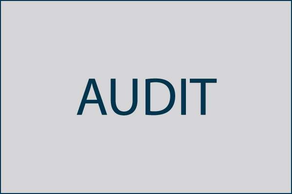 Audit of Budget and Management Office