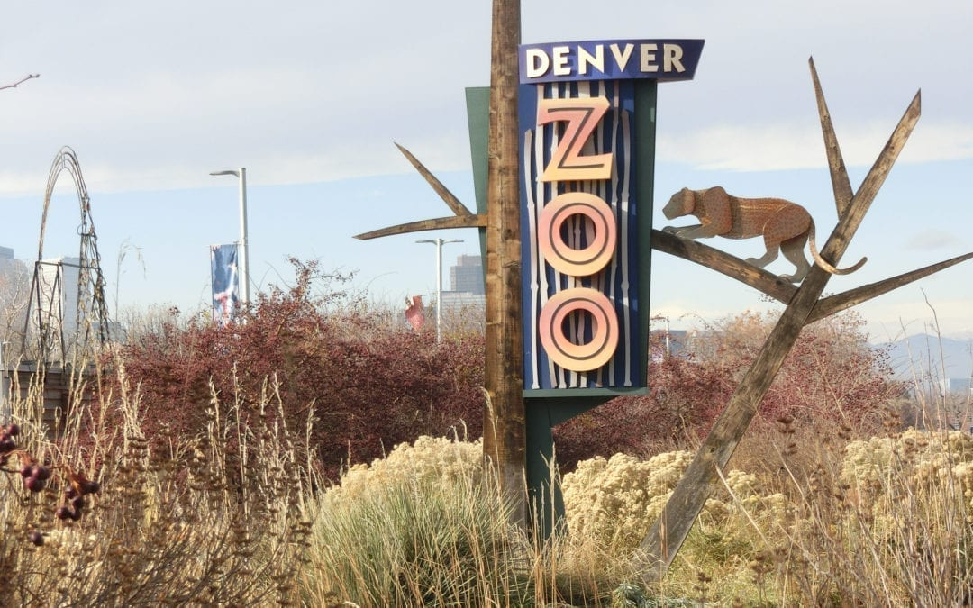 Zoo Makes Improvements After Audit